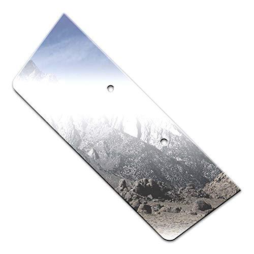 Brighter Design Chrome 8 1/4' License Plate Bezel fit for 2010-2013 Kia Forte