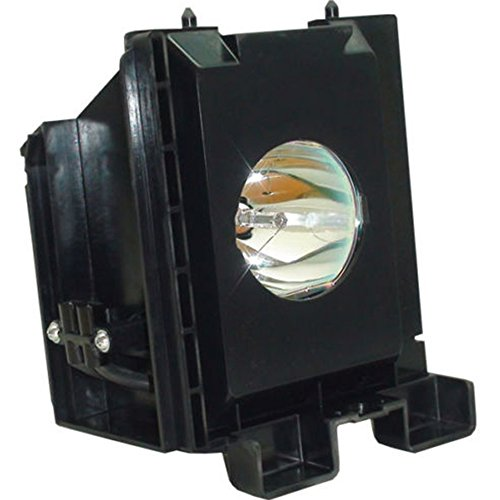 Generic BP96-01073A / BP96-01394A / BP96-01099A Replacement Lamp with Housing for Samsung TVs ()