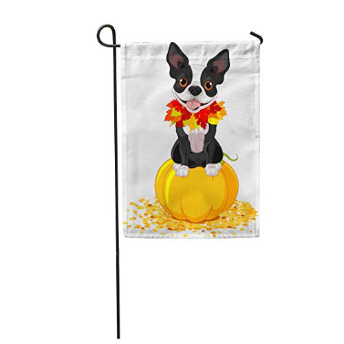 Semtomn Garden Flag Dog Boston Terrier Sits on Pumpkin Halloween Cartoon Costume 12