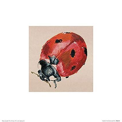 Il Gruppo Art Lily Greenwood Coccinella Stampa Artistica 30 X 30