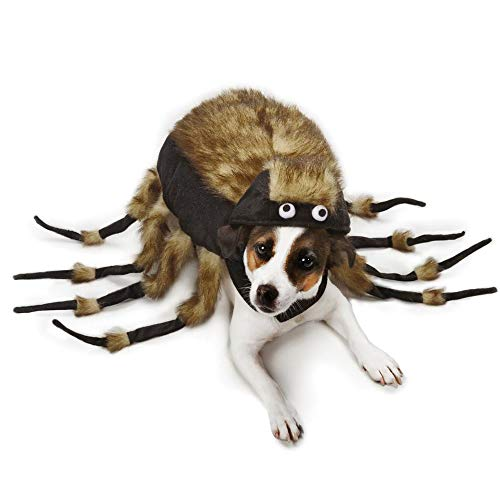 Spider Dog Costume - Funny Halloween Tarantula Dog Costume, Creepy Crawly Araneid Pet Costume Dog Cosplay Jumpsuit Fashion Dress for Puppy Small Medium Large Dogs Special Events Photo Props]()