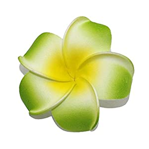 bbhoney 20 Pcs Hawaiian Artificial Plumeria Flower Petals for Wedding Party Decor Hair Accessory 6