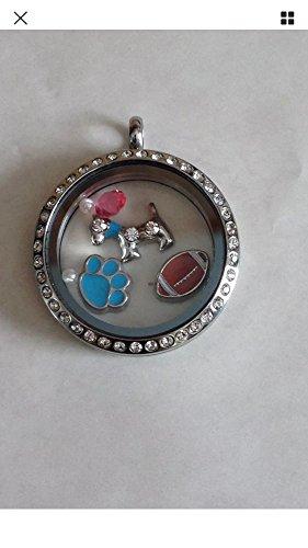 BLUE DOG PAW Floating Charm- for glass floating locket