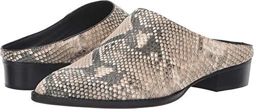 (Dolce Vita Women's Aven Snake Print Embossed Leather 8.5 M US M)