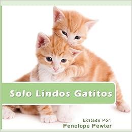 Book Solo Lindos Gatitos