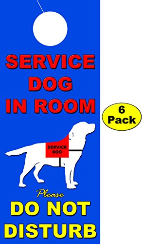 service dog in room - 8