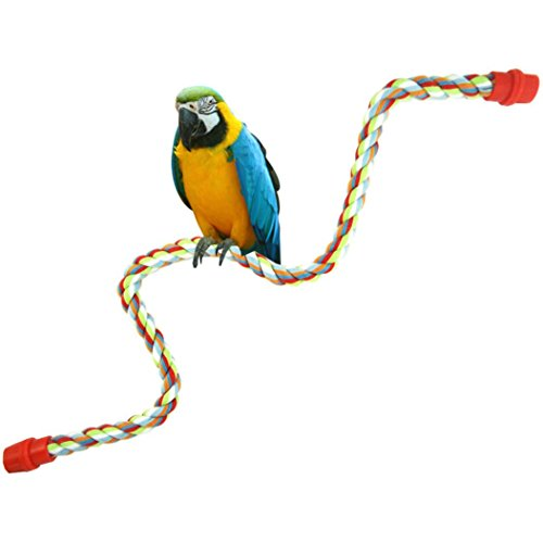 (Fheaven Small or Medium or large-Sized Parrot Toy Pure Natural Colorful Standing Perch Cage Parrot Chewing Toy (L))