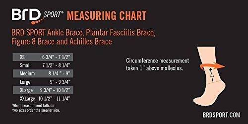 BRD Sport Achilles Compression Ankle Brace (Black with Orange Accent Stripe, L [9''-9.75'']) by BRD Sport (Image #2)