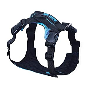 Seacue Dog Harness