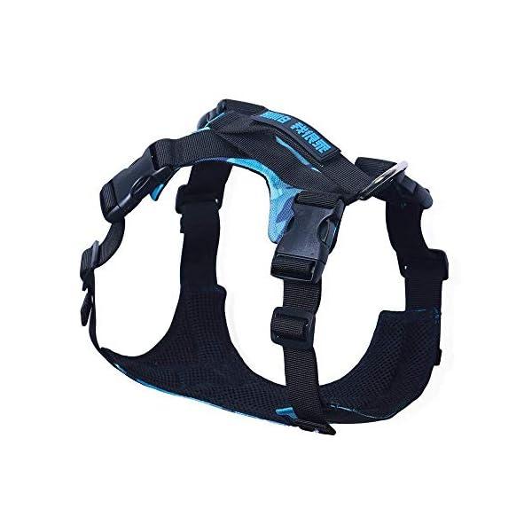 Seacue Dog Harness