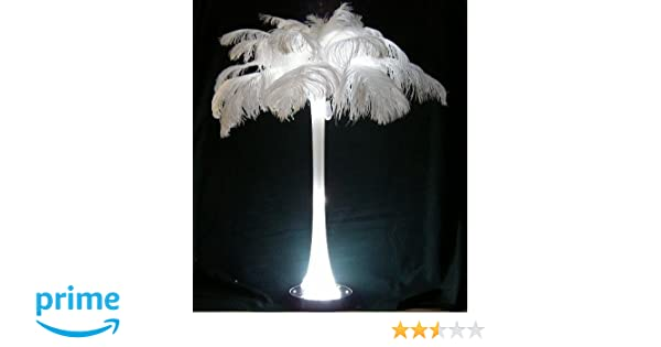 Sale White Ostrich Feathers Wholesale Bulk 14//17 Long Deluxe Tail Plume Feathers White Qty 100 by Six Star Sales Special 72 hr