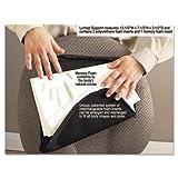 Clean Green Deluxe Lumbar Support Cushion w/Memory Foam, 7-1/2w x 2-1/2d x 12-1/2h, Black