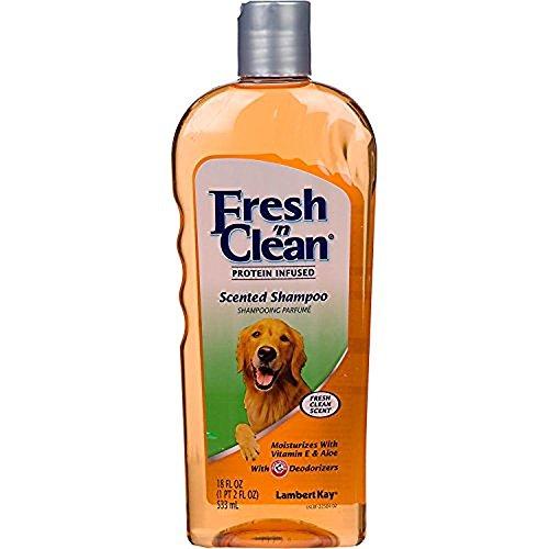 Fresh N Clean Lambert Kay Scented Shampoo, 18 oz. ()