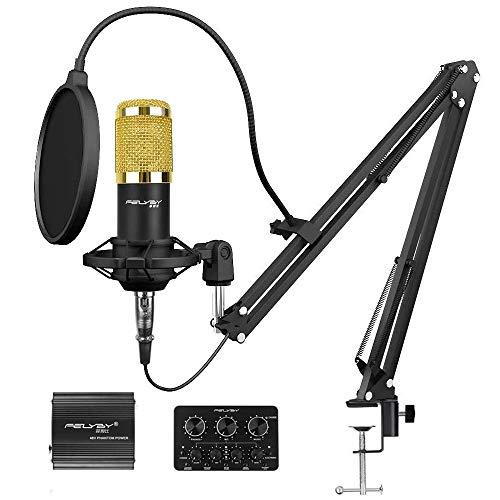 Pro Condenser Microphone XLR