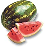 WHOLE WATERMELON FRESH FRUIT PRODUCE VEGETABLES FLORIDA GROWN