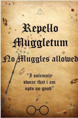 Amazon.com: Harry Potter- no entrar Póster Wall Art | Isha ...