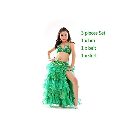3 Piece Oriental Outfit Bra, Belt, Skirt Girls Belly Dance Costume Set,Pink,One Size -