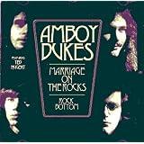 Amboy Dukes - Marriage On The Rocks / Rock Bottom