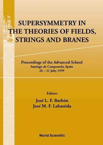 Download Supersymmetry in the Theories of Fields, Strings and Branes: Proceedings of the Advanced School Santiago De Compostela, Spain 26 - 31 July 1999 pdf epub