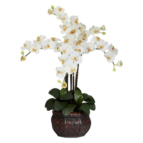 Nearly Natural 1211-CR Phalaenopsis with Decorative Vase Silk Flower Arrangement, Cream -