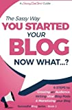 You Started Your Blog - Now What...? (Beginner Internet Marketing Series) (Volume 2)