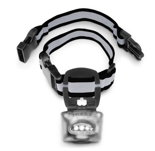 PupLight2 Twice as Bright with Reflective Dog Safety Collar, Silver ()