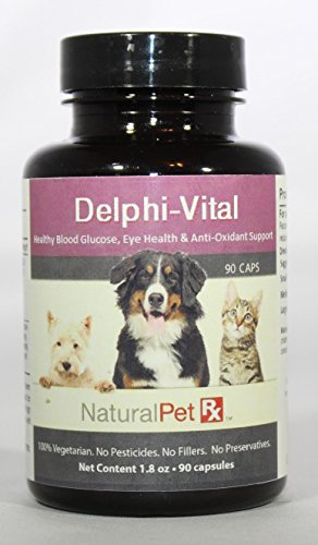 Capsules 90 Fruits Radical (Natural Pet RX Delphi-Vital Blood Glucose, Eye & Anti-Oxidant Support (90 Capsules))