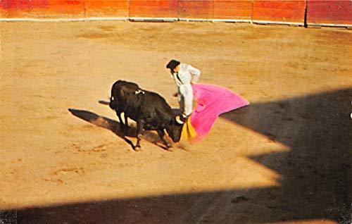 Bullfight in Old Mexico, Veronica Tarjeta Postal ...
