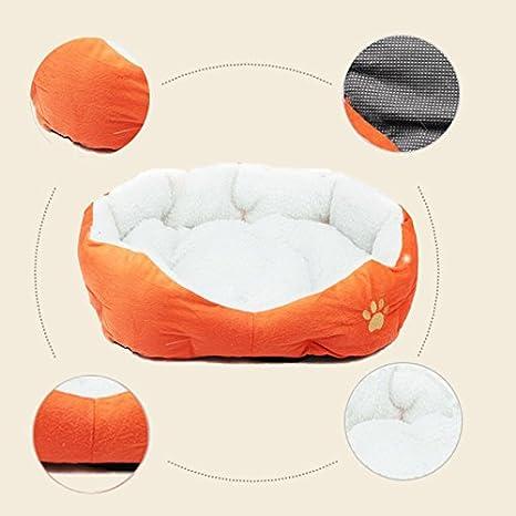 LAAT Cama para Mascotas Cama de Perro Cama de Dormir para Gatos Cama de Perro de Forma Redonda - Naranja: Amazon.es: Productos para mascotas