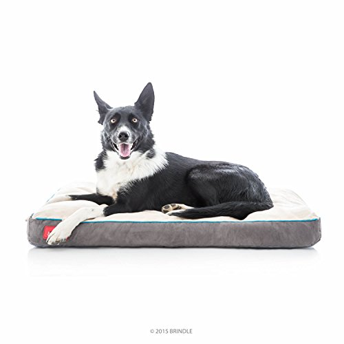 Brindle Soft Shredded Memory Foam Dog Bed with Removable Washable Cover – 34in x 22in – Khaki For Sale