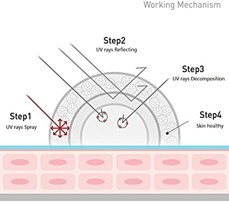 Cell Fusion C Laser Sunscreen 100 SPF50+/PA+++ 50ml / 1.69oz