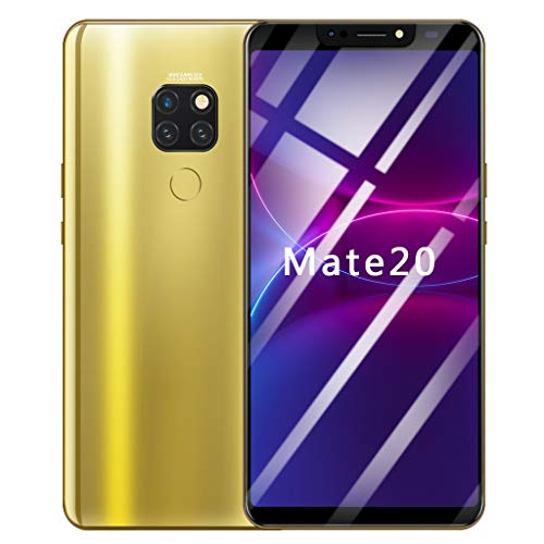 Full Screen Unlocked Smartphone | 6.1 inch Android 8.1 Ultrathin 4 HD Camera Cell Phones | GSM 4G LTE WiFi Mobile Phone 1G RAM, 16GB ROM, 8-Core Processor Cellphone Telephones 2 SIM (Gold)