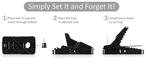 Buy outdoor rat traps