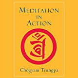 Bargain Audio Book - Meditation in Action