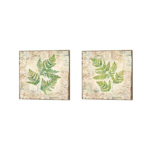 (Birch Bark Ferns by Cynthia Coulter, 2 Piece Canvas Art Set, 10 X 10 Inches Each, Floral)