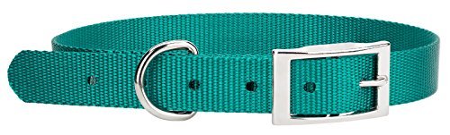 Country Brook DesignÃ'Â Teal Nylon Deluxe Traditional Collar - Extra Large
