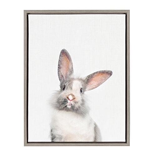 Kate and Laurel Sylvie Young Rabbit Framed Canvas by Amy Peterson, 18x24, ()
