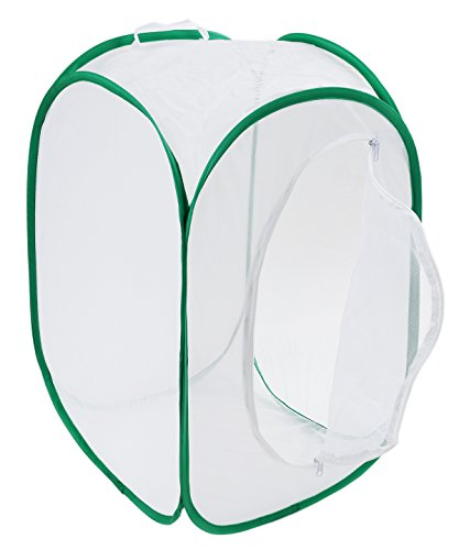 Insect and Butterfly Habitat Terrarium Pop-up - 23.6 Inches Tall (White)