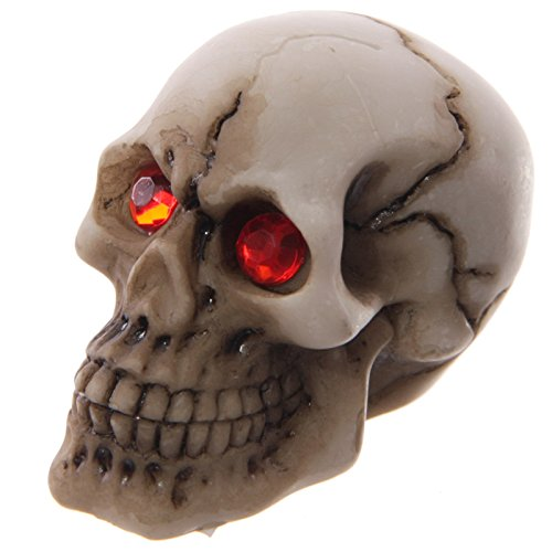 [1 Piece] Skull with Small Ornament Red Gem Eyes Gruesome Halloween Decoration Skull Gacer with Jewel (Halloween Shaker Card)