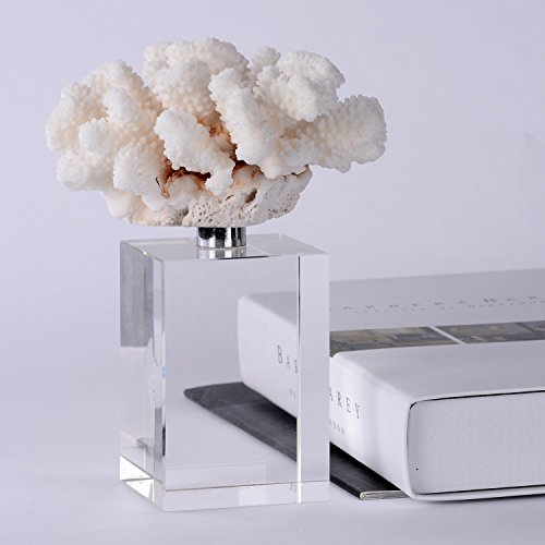 Coral Crystal - 4