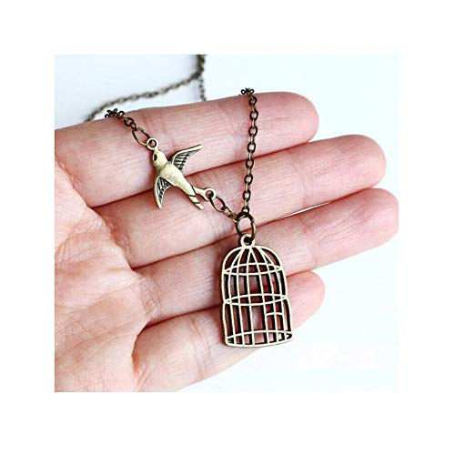 (Freedom Bird Flying Away from Birdcage,Graduation Necklace Jewelry,Antique Brass Bird Cage Pendant,Be Free Bird Necklace with Gift Bag)