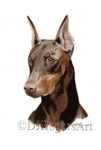 amazon com red doberman pinscher art print by watercolor artist dj