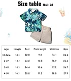 SANMIO Toddler Boys Clothes Outfits(1-6T), Baby