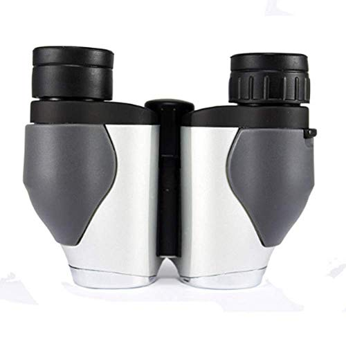 Compact Binoculars for Bird Watching,Great for Outdoor Activities Concerts Hiking Travel and Stargazing Hunting .Waterproof & Low Light Night Vision Gray
