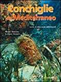 Conchiglie del Mediterraneo