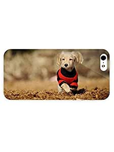 3d Full Wrap Case for iPhone 5/5s Animal Long Haired Dachshund Puppy