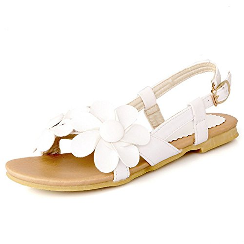 LongFengMa Ladies Fashion Flower Sandals Flats for Summer Dress White Wty5ZrFQPd