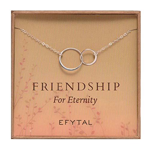 EFYTAL Sterling Silver Friendship for Eternity Necklace, Two Interlocking Infinity Circles Gift for Best Friend (The Two Best Friends)
