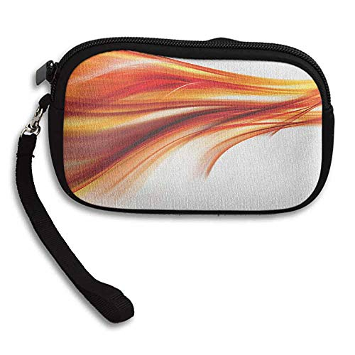 Abstract Coin Wallet Modern Contemporary Abstract Smooth Lines Blurred Smock Art Flowing Rays Print W 5.9