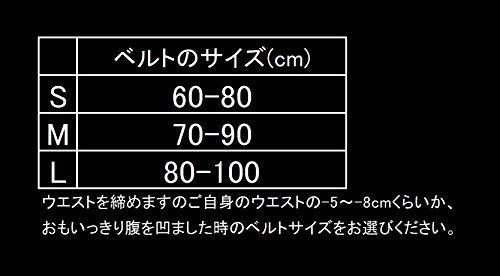 Inzer Advance Designs Forever Lever Belt 10MM Small Black